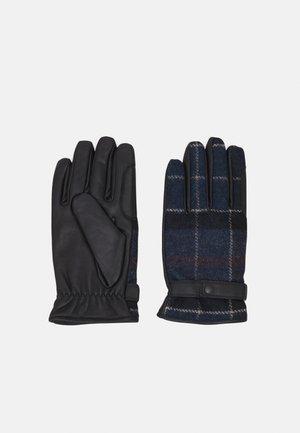 NEWBROUGH TARTAN GLOVES - Gloves - midnight