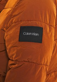 Calvin Klein - CRINKLE  - Winter jacket - brown - 4