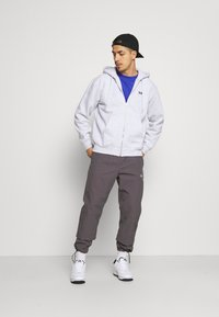 Obey Clothing - EARTH CRISIS - Zip-up hoodie - ash grey - 1
