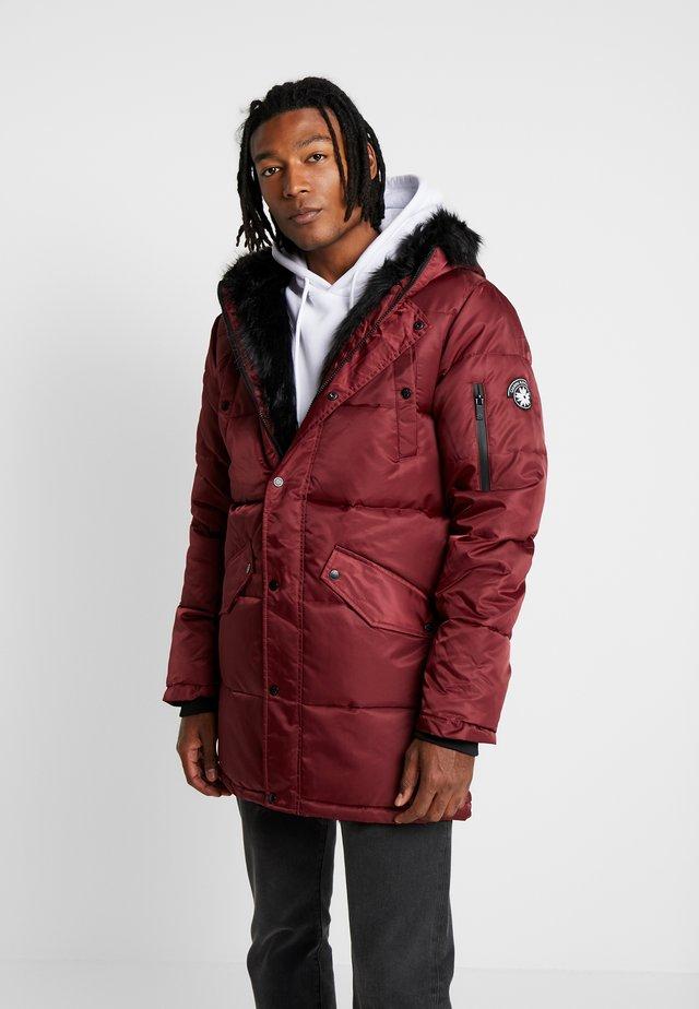 WOLF COAT - Winter coat - burgundy