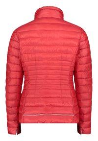 Gil Bret - GIL BRET STEPPJACKE MIT KUNSTDAUNE - Winter jacket - wild red - 1