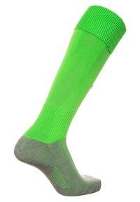 Erima - Knee high socks - grün - 1