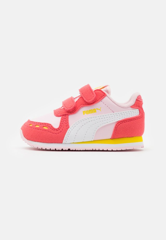 CABANA RACER - Sneakers basse - pink lady/white/sun kissed coral