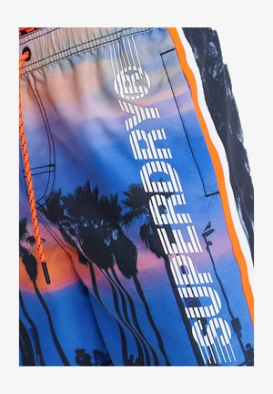 Swimming shorts - 0vp skate palm