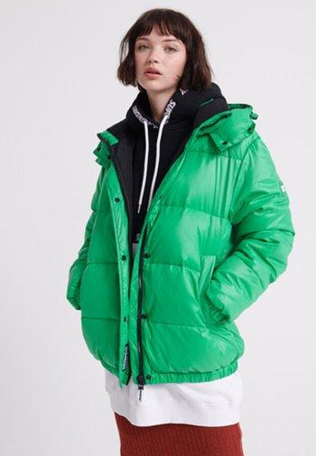 DOUDOUNE ASTRID - Winter jacket - vert city