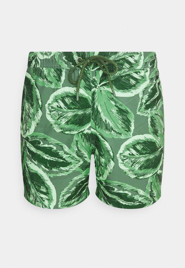 SYLVESTER - Swimming shorts - green