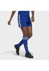 adidas Performance - SQUADRA - Sports shorts - royblu/white - 2