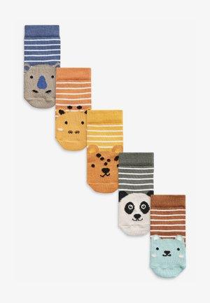 5 PACK  - Socks - green