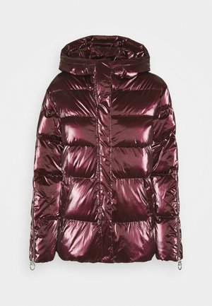 SAVIO QUILTED JACKET - Zimní bunda - bordeaux