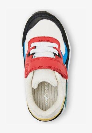 BUBBLE - Sneakers basse - mottled royal blue