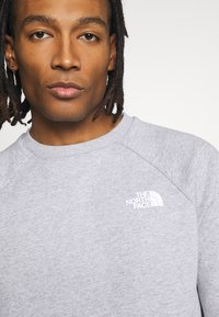 The North Face - RAGLAN BOX CREW - Collegepaita - light grey - 5