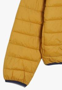 Timberland - Zimní bunda - yellow boots - 3