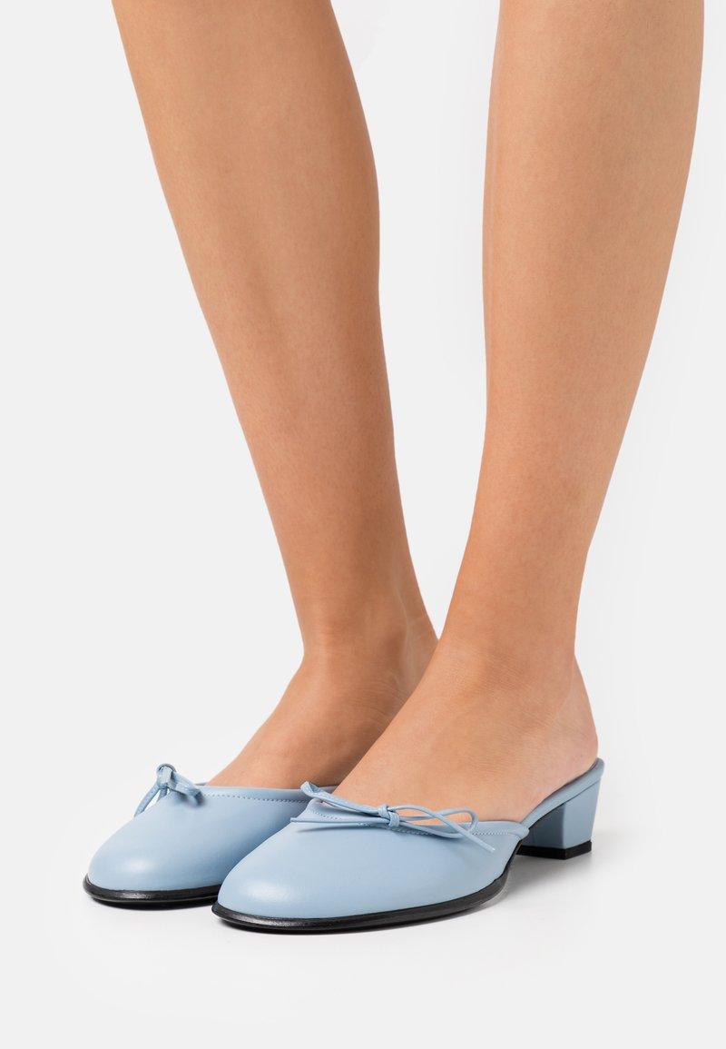 Dorateymur - SEEDLESS RASPBERRY  - Mules - blue