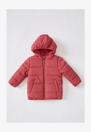 REGULAR FIT  - Winter jacket - bordeaux