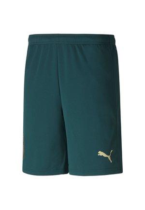 ITALIEN  - Pantalón corto de deporte - ponderosa pine/peacoat
