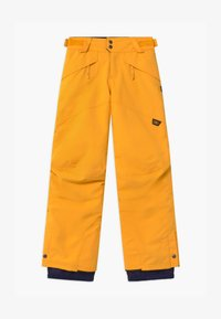 O'Neill - ANVIL - Snow pants - old gold - 0