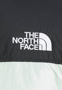 The North Face - RETRO UNISEX - Down jacket - green mist - 6
