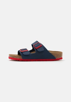 ARIZONA - Mules - desert soil blue/red