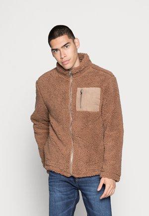 POCKET JACKET - Winter jacket - brown