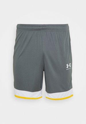 CHALLENGER SHORT - Pantalón corto de deporte - pitch gray
