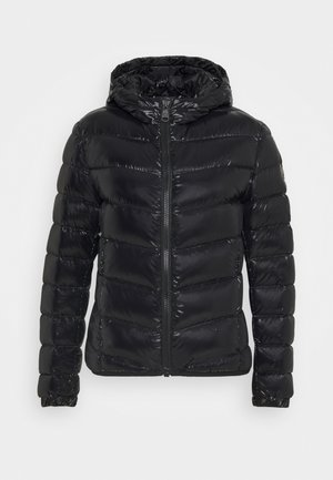 LADIES JACKET - Piumino - black