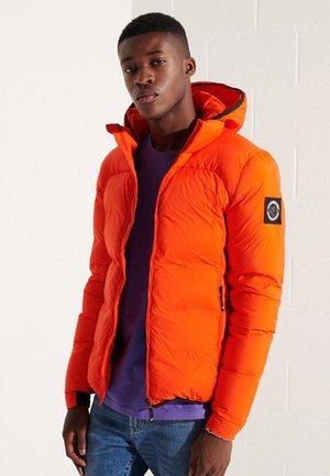 EXPEDITION - Gewatteerde jas - bold orange