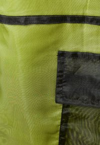 The Ragged Priest - PANT LINING - Kalhoty - lime/black - 2