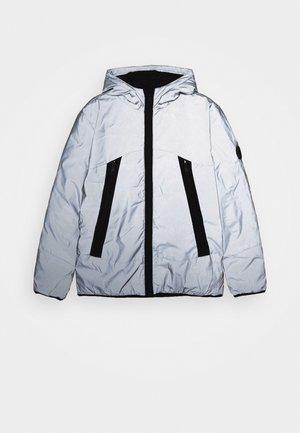 TEENAGER - Winter jacket - silver grey