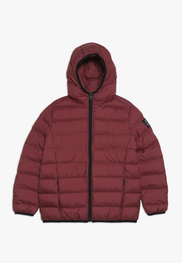 ASPEN - Veste d'hiver - raspberry