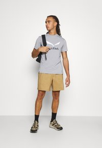 Salewa - SOLID LOGO DRY - T-shirt med print - heather grey melange - 1