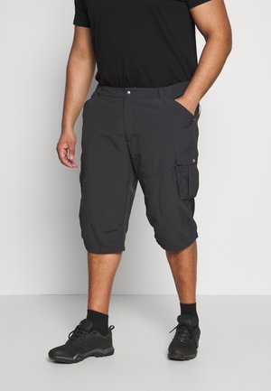 ARDOCH - Outdoor shorts - anthracite