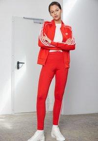 adidas Originals - STRIPES COMPRESSION - Leggings - Trousers - red - 1