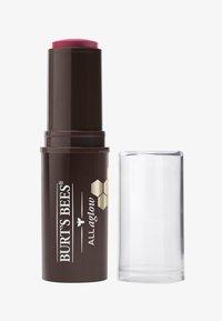 Burt's Bees - LIP & CHEEK STICK - Lipstick - lilac lagoon - 0