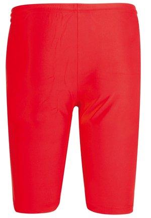 Pants - rot