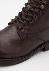 Lumberjack - ROY - Šněrovací kotníkové boty - dark brown - 5