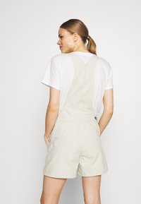 Patagonia - STAND UP OVERALLS - Sports shorts - dyno white - 2