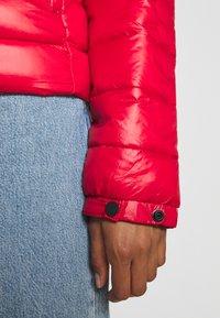 Superdry - SHINE FUJI  - Winter jacket - rouge red - 5
