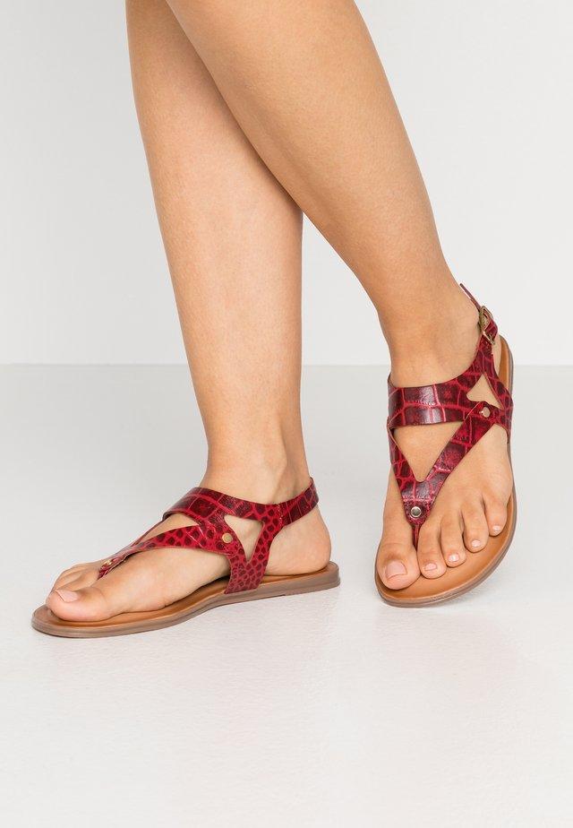 PETREY - Sandály s odděleným palcem - red