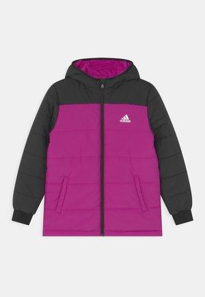 PADDED UNISEX - Winter jacket - sonic fuchsia/black/white