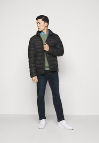 Polo Ralph Lauren - TERRA - Winterjas - black - 1