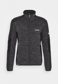Regatta - COLADANE - Fleece jacket - ash - 4