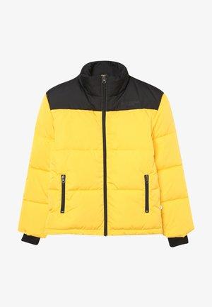 TITAN JACKET - Zimní bunda - black/yellow