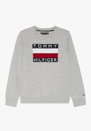 ESSENTIAL GRAPHIC  - Strikpullover /Striktrøjer - grey