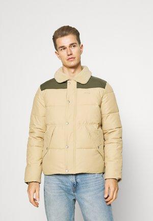 HILLS - Winter jacket - light beige/forest
