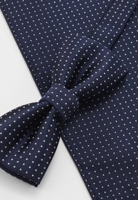 Only & Sons - ONSTBOX THEO TIE SET - Einstecktuch - dress blues/white - 4