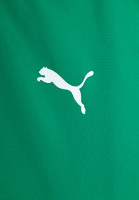 Puma - TEAMGOAL SIDELINE JACKET - Training jacket - pepper green/power green - 1