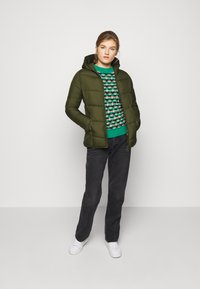 Save the duck - RECYY - Winter jacket - dusty olive - 1