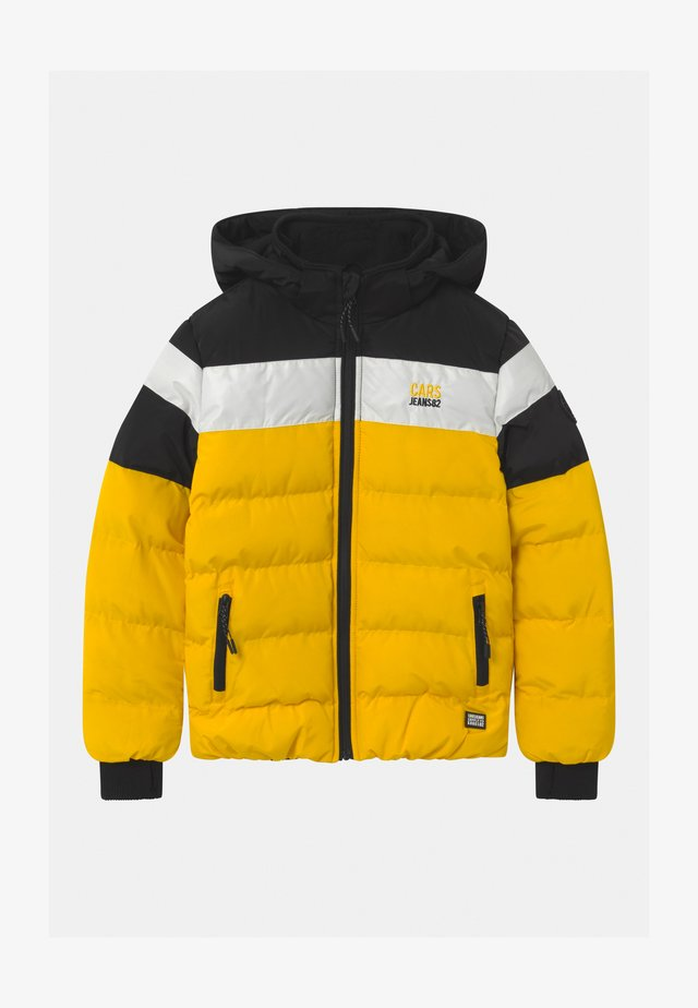 GRANBY POLY - Winter jacket - yellow