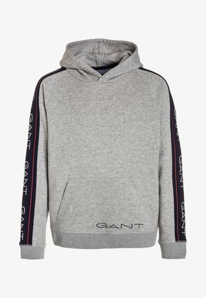ICON HOODIE - Jersey con capucha - light grey melange