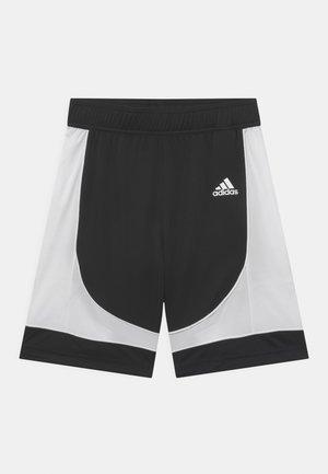 PREMIUM TEAM UNISEX - kurze Sporthose - black/white